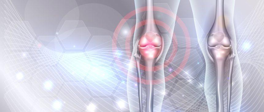 biotec_slide_knees_t_1